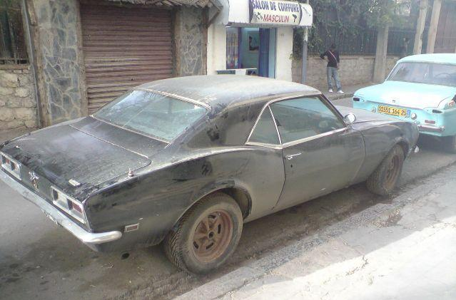 Camaro+Algerie.jpg