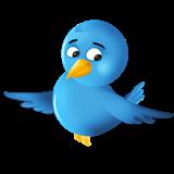 Terra's Twitter