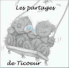 LES PARTAGES DE TICOUER