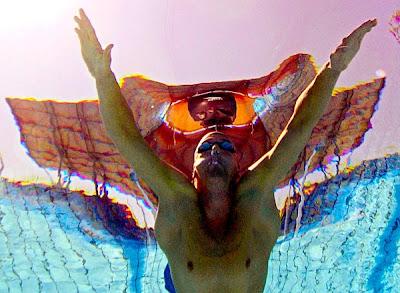 http://3.bp.blogspot.com/_4I7DCAJw-Ss/Sbfr8ujLojI/AAAAAAAAH28/ICSl7JKG3mI/s400/fly+swim.jpg