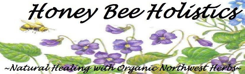 Honey Bee Holistics
