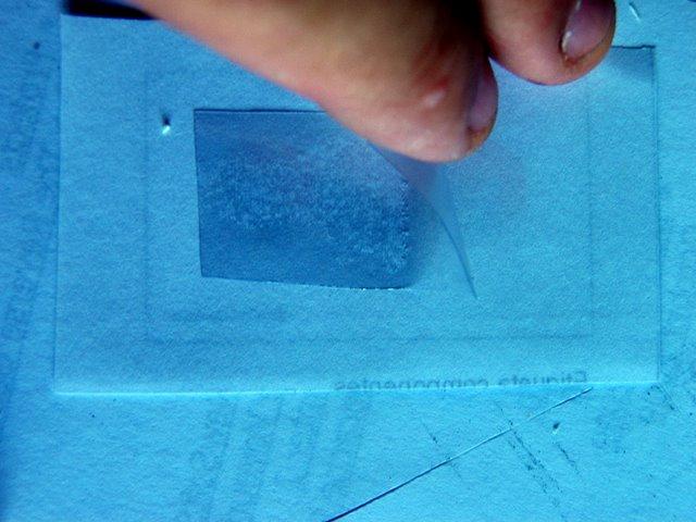 Txapuzas electr nicas papertecladodigital pulsadores - Plastico autoadhesivo ...