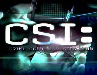 CSI Season 9 title