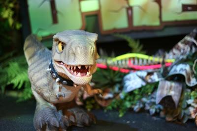 D-Rex pet