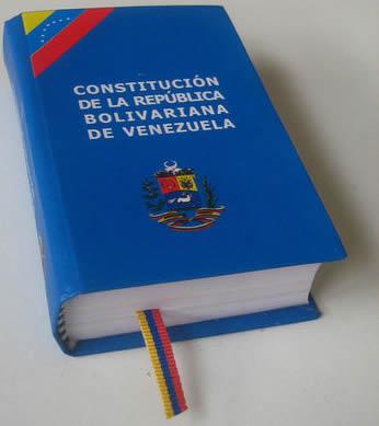 ensayo sobre la constitucion: