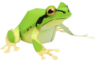 Tree Frog Papercraft