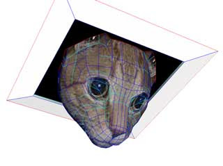 Ceiling Cat Papercraft