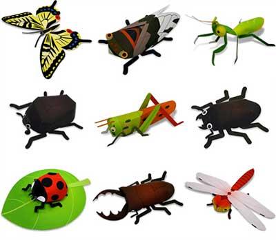 insetti di carta