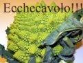 Ricette Cavolose per Antonella