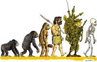 la evolucion fatal