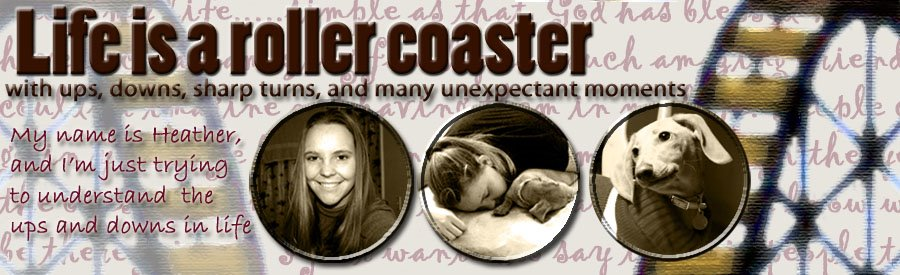 Life is like a roller coaster with ups downs sharp turns and many unexpectant moments