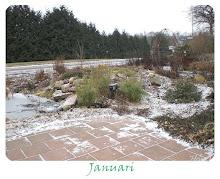Månadens bild 2009