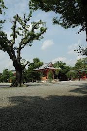 Sanjusangendo-kyoto