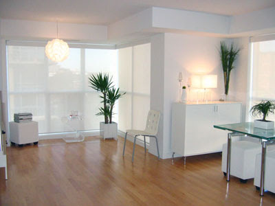 Oggi illuminiamo le piante da appartamento coffee for Piante appartamento design