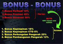 Bonus-Bonus