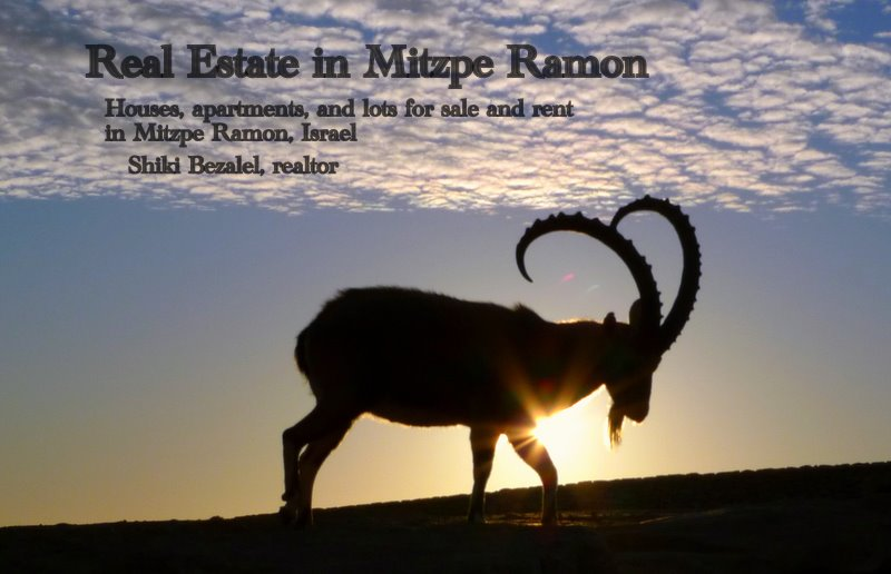 Real Estate in Mitzpe Ramon