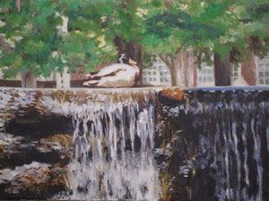 duck,falls,waterfall,impressionist,MilfordCT