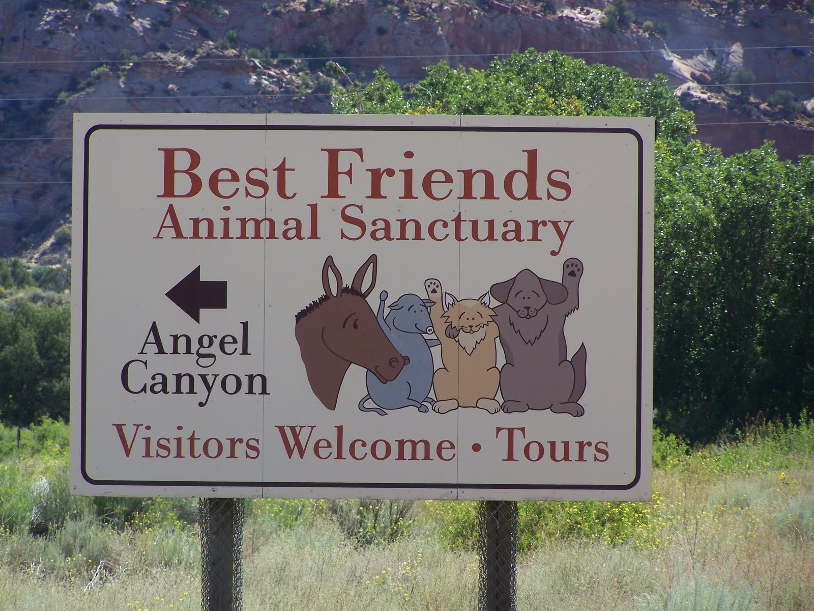 Best Animal Shelter : Up to speed best friends animal sanctuary