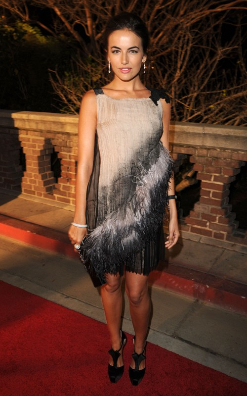 Camilla Belle Hairstyles Pictures, Long Hairstyle 2011, Hairstyle 2011, New Long Hairstyle 2011, Celebrity Long Hairstyles 2233