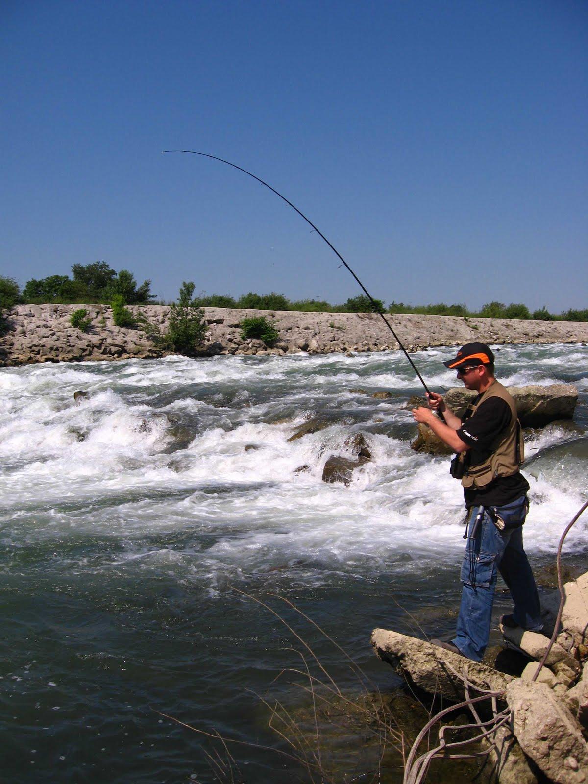Fishing in croatia and in the neighbourhood good barbel for Fishing in croatia
