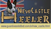Canil New Castle Heeler