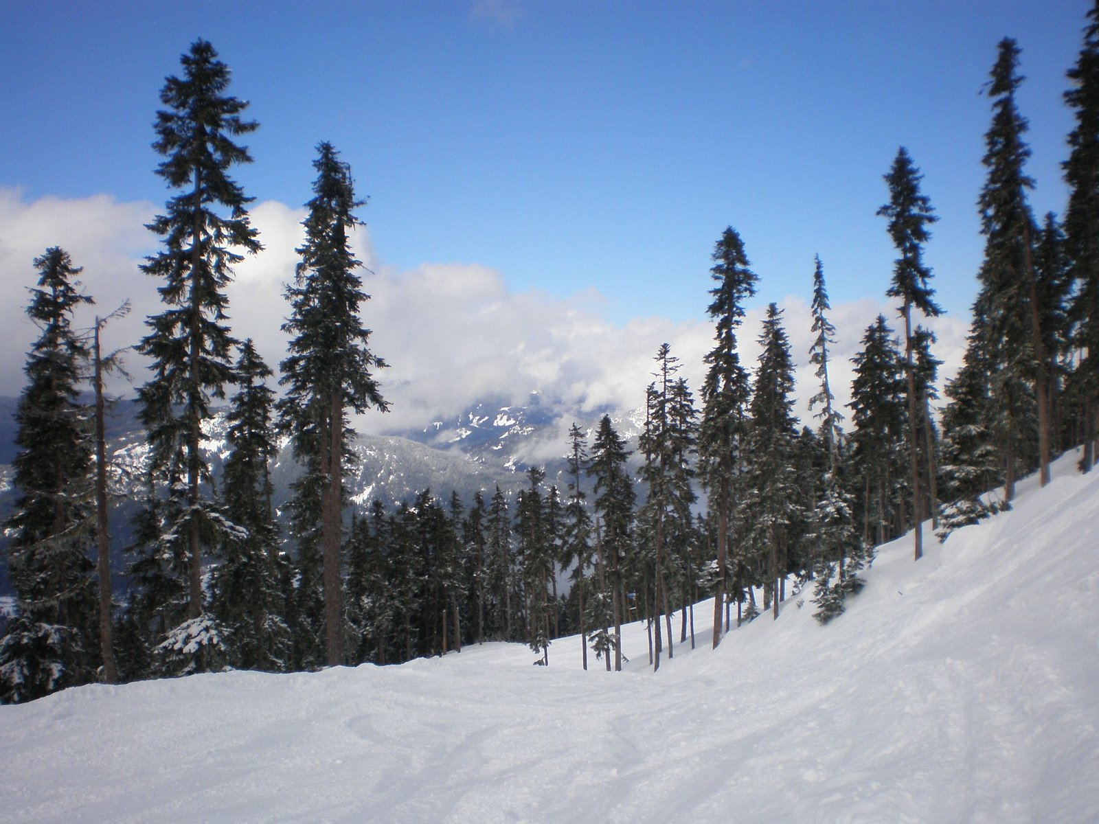 blackcomb mountain, whistler, canada