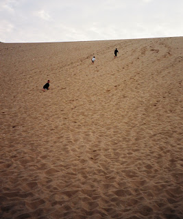 dune climb,sleeping bear sand dunes, michigan