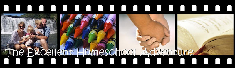 The Excellent Homeschool Adventure