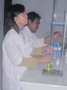 Pemeriksaan sampel