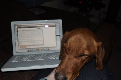This picture is of Taxi resting his head in my lap along with the computer. He came over as I was typing this blog so I had to add it.