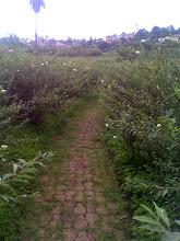 El Camiño