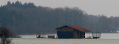 la photo du 4 janvier 2010 (585)