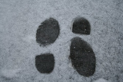 la photo du 9 décembre 2008 (209)