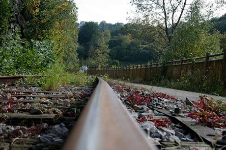 la photo du 3 octobre 2010 (857)