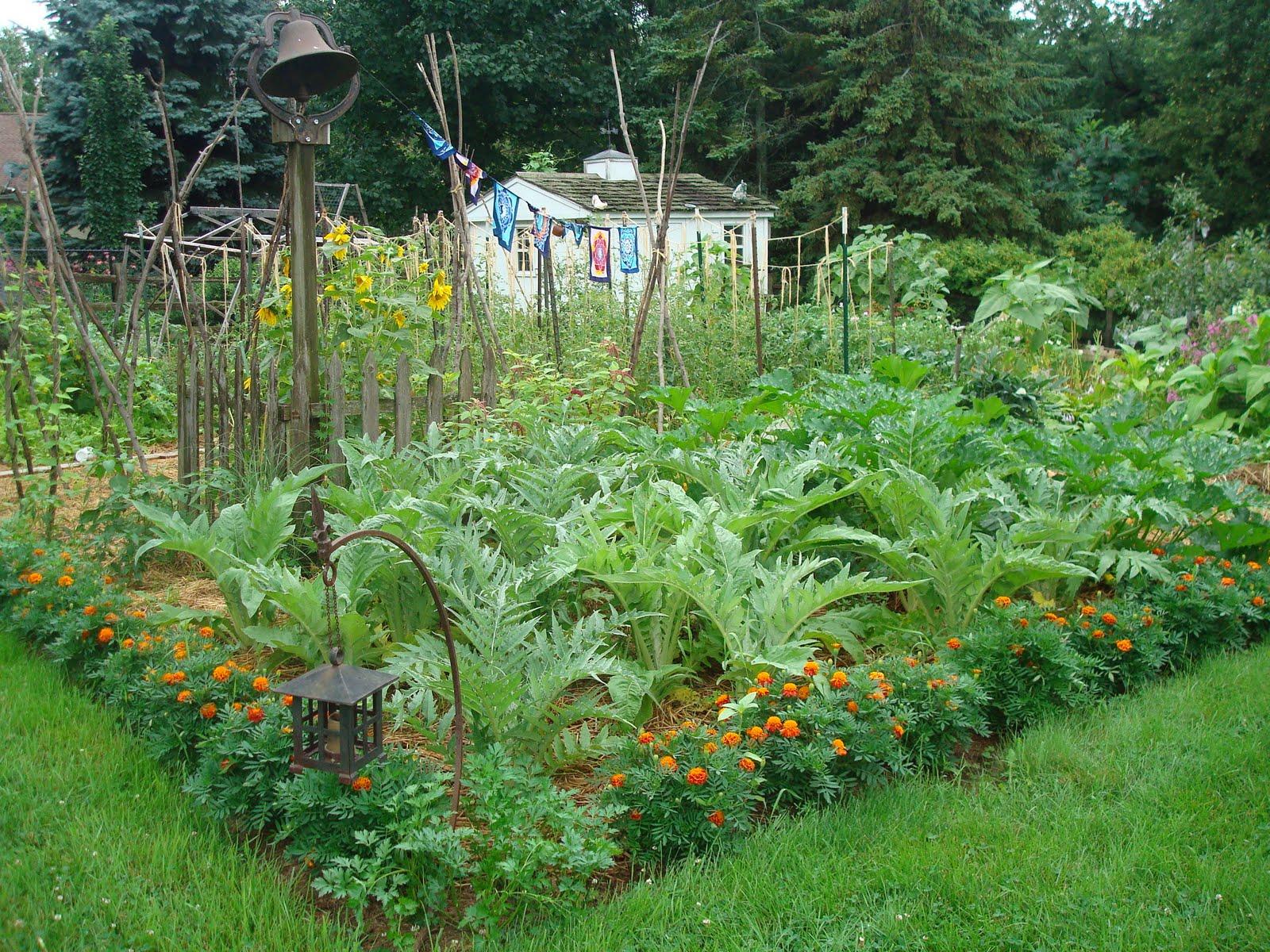 Garden in august in a garden - The August Garden With Cardoons Aplenty