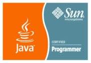 Sun Certified Java Programmer 5.0