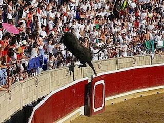 salto+toro Un toro salta a las gradas y embiste al público