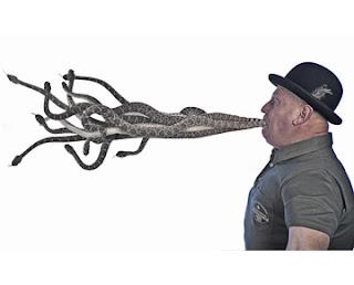 serpientes Los records guinness más absurdos