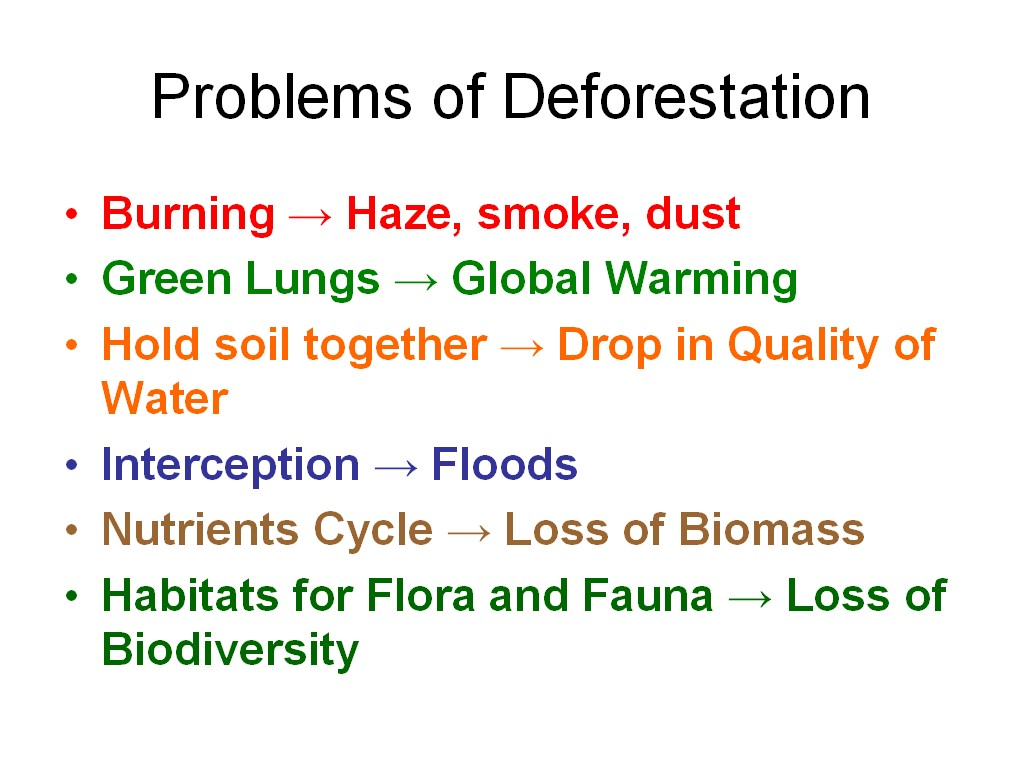 the issues of deforestation Deforestation is likely to warm the climate even more than originally  not been as widely studied as the effects of carbon dioxide emissions.