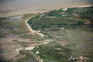 vue aérienne de l'ile aux oiseaux sur le bassin d'arcachon