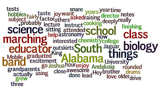 A wordle based on a short paragraph about Josh King