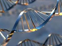 ДНК тест за бащинство в домашни условия