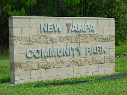 New Tampa