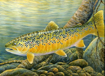 Brown Trout painting by Shari Erickson