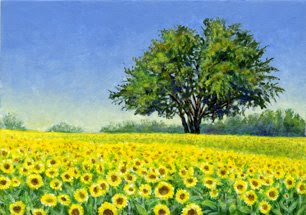 sunflower field ACEO by Shari Erickson