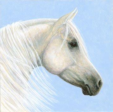 Arab Horse Portrait by Equine Artist Shari Erickson
