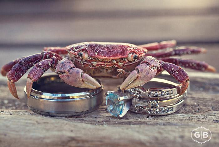 As You Wish WEDding Blog Destination Wedding Wednesday Ring Shot