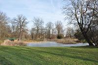park lesnicki