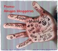 Este blog tiene el premio Amigas blogueras.
