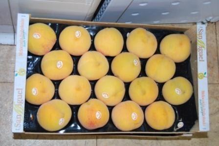 Fruta de Primera Calidad
